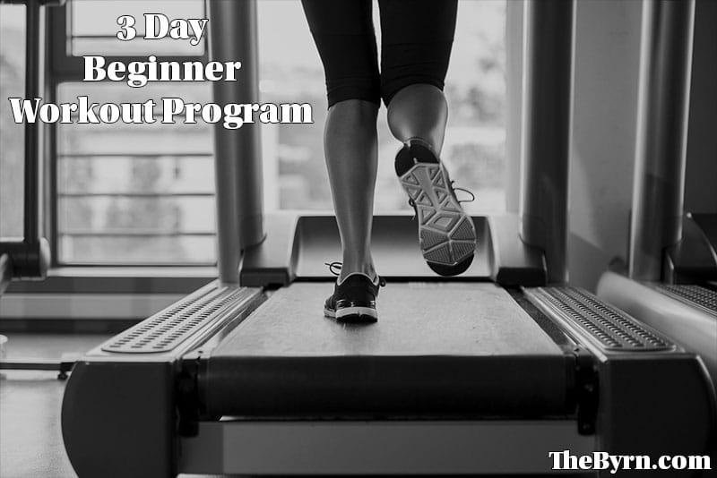 3 Day Beginner Workout Program
